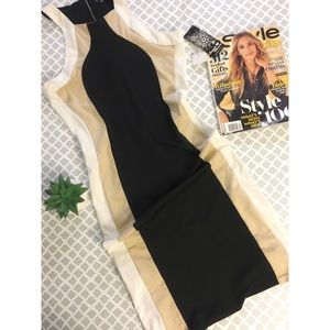 JC Penny Midi Bodycon Dress